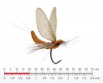 J:son Mayfly Dun 2 Cinnamon Brown