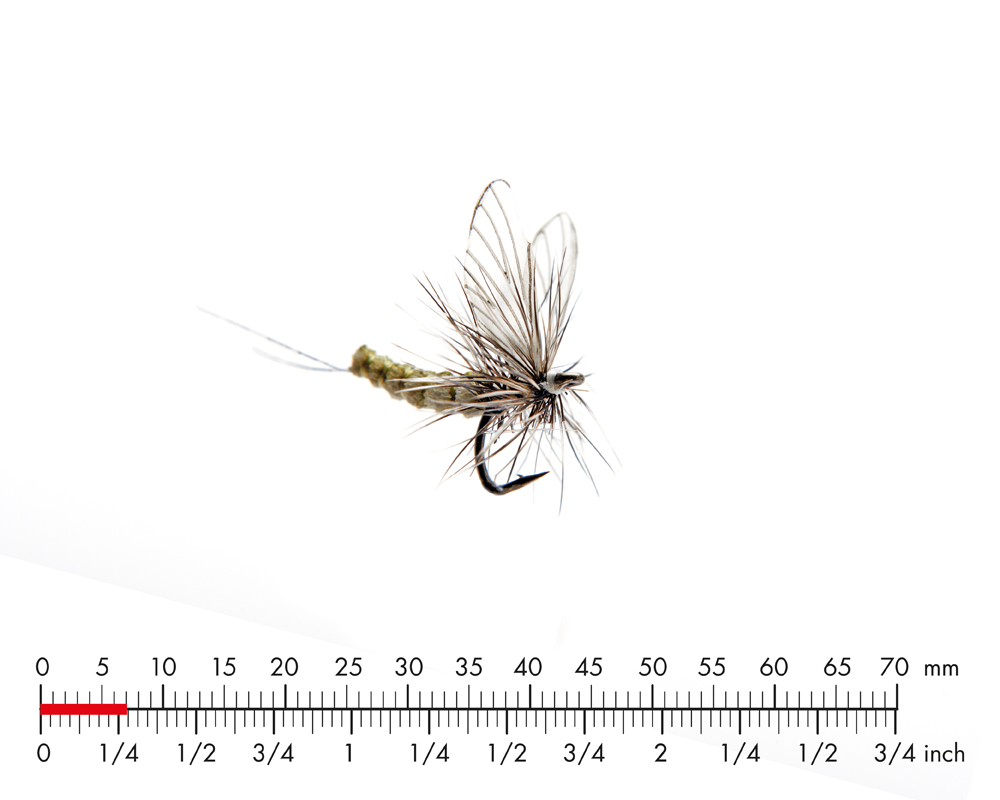 J:son Mayfly Dun 5 Olive Grey