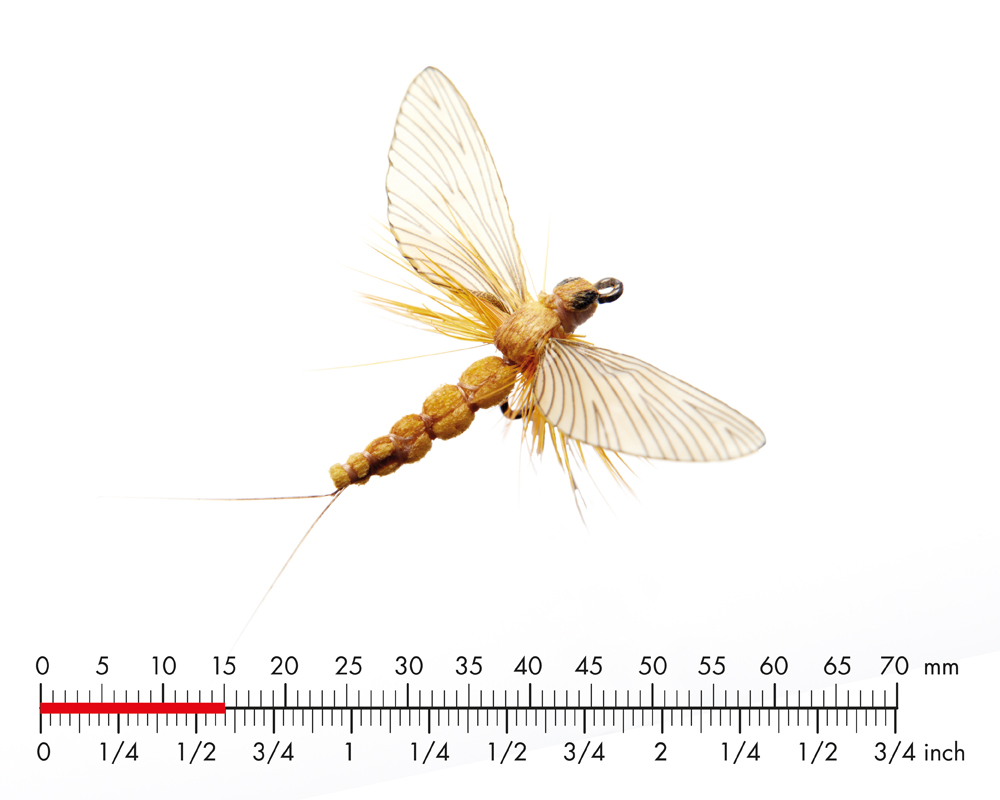 J:son Mayfly Spent 3 Sulphur