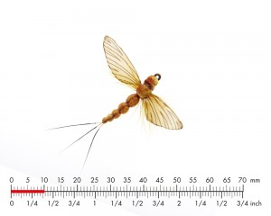 J:son Mayfly Spent 4 Sulphur