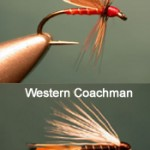 Clyde Style Flies